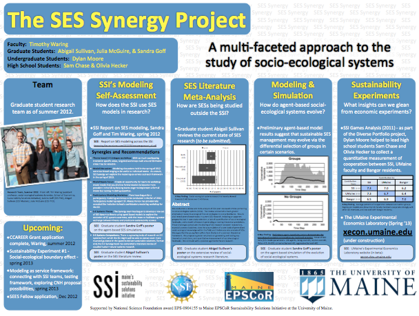 The SES Synergy Project - a summary of work in poster form